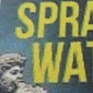 Spraakwater