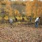 Beheerwerken Natuurpunt Zwevegem: Kooigem hakhoutbeheer, braambestrijding