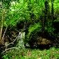 Excursie Natuur en Erfgoed naar Meerbeek en Natuurgebied Rotte Gaten