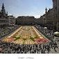 Fine Fleur bruxelloise: voyage d'un tapis de fleurs