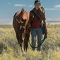 MOOOV : Lean On Pete - Regie: Andrew Haigh VK, 2017, 122 minuten Distributeur: Imagine