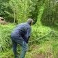 Beheerwerken in Floordambos-Peutiebos:  Vallei van de Trawool