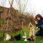 Eco-comedy: toen de dieren nog spraken