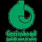 Groene kriebels  : Interieur tips kerst + workshop bloemschikken