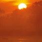Lezing: 'Is Biodiversiteit hot? Wat klimaatverandering doet met de natuur' (Hasselt)