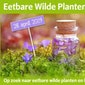 Wandeling Eetbare Wilde Planten