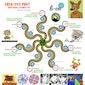 Creatuur Natuur workshops voor Kinderen