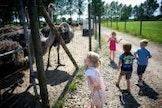 Kinderboerderij met spel