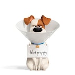 The Secret Life of Pets 2 (Huisdiergeheimen 2)