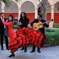 Almeraya Flamenca