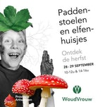 Workshop Paddenstoelen en elfenhuisjes