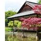 De symboliek van een Japanse tuin - Tijdelijk uitgesteld