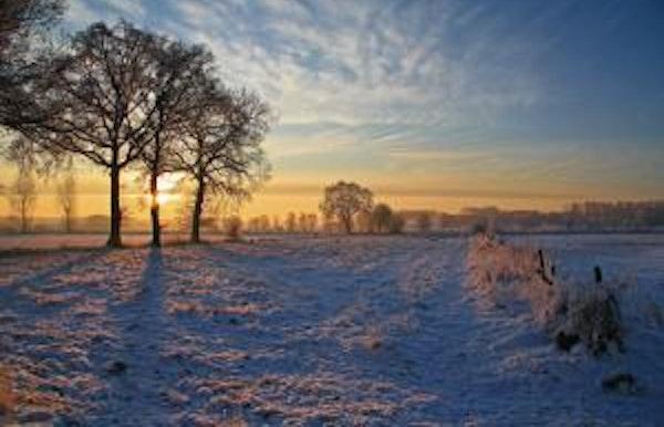 Winterse wandeling (Lummen)