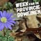 Week van de Provinciedomeinen: Kruiden- en plantenwandeling