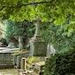 Samen Amusant op Pad: Oud kerkhof Hasselt en omgeving (stadsflora)