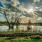 Waterwandeling in Vochtig-Haspengouw