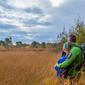 Op stap in Bosland: Speuren naar Kruidige Gagel