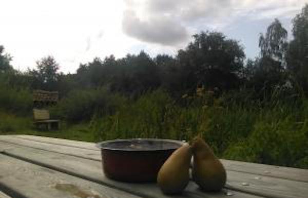Weekendcafé in Natuur.huis De Rammelaars
