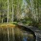 Dag van de Wijers - Wijerse Water Wandeling