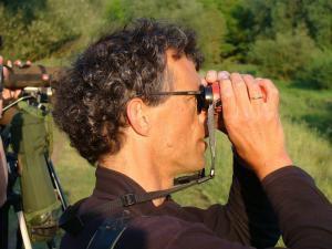 Cursus: Leren kijken naar vogels (Lummen)