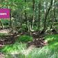 Ecologische werkgroep Meanderland 2021 : DE RAMMELAARS