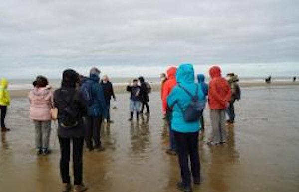 Bos- en strandwandeling: Eb en vloed, wat laat de zee achter op het strand?