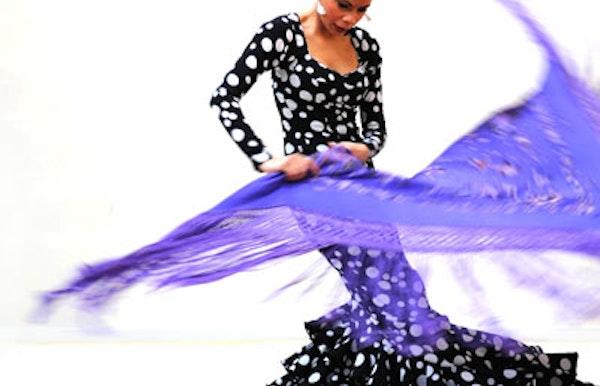 Flamenco techniek