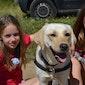 Activak jeugdvakanties – Hondenkamp