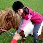 Activak jeugdvakanties – Shetlanderkamp