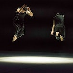 The New Zealand Dance Company (nz)