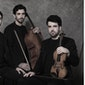Trio Zadig : Beethoven Geistertrio