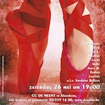 THE RED POINTE SHOES Danscentrum Pirouette